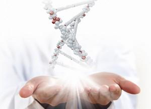 DNA hand