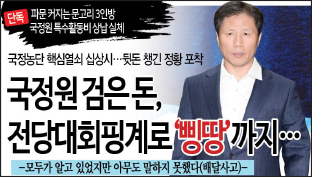 8_국정원