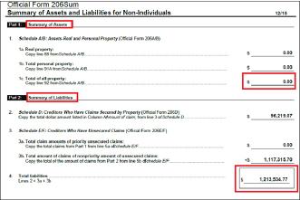 ▲ 비비큐미국법인은 파산신청서에서 자산은 한푼도 없고 빚이 121만여달러에 달한다며 이의 탕감을 요청했다.