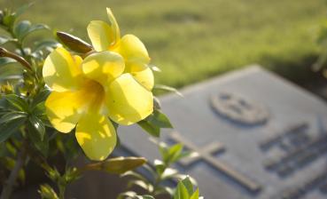▲ 장례는 고인에 대한 마지막 공경심에서 비롯된다.