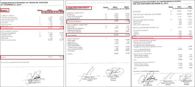 ▲ 딜로이트 산토스CMI 2014년치 감사보고서 - 왼쪽부터 자산, 부채, 손익