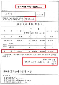 ▲ 손혜원 2017년치 정치자금 수입지출보고서