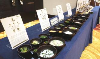 ▲ 한국의 전통 음식을 소개해 이목을 끌었다.
