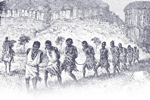 미국 노예제도 2